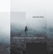Asphodels Abide cd cover